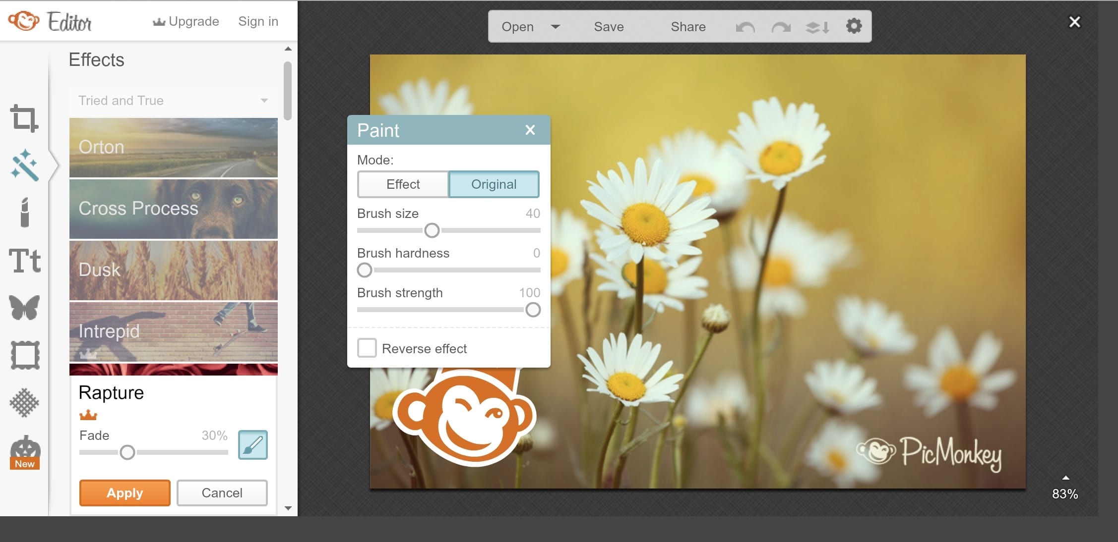 how to add layers on picmonkey